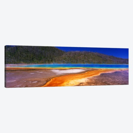Grand Prismatic SpringYellowstone National Park, Wyoming, USA Canvas Print #PIM690} by Panoramic Images Canvas Art Print