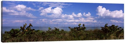 Clouds over the sea, Tampa Bay, Gulf Of Mexico, Anna Maria Island, Manatee County, Florida, USA Canvas Art Print
