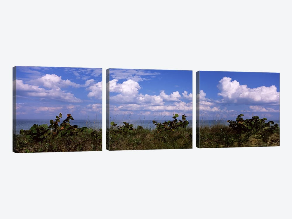 Clouds over the sea, Tampa Bay, Gulf Of Mexico, Anna Maria Island, Manatee County, Florida, USA by Panoramic Images 3-piece Canvas Print