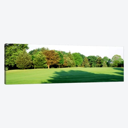 Trees on a golf courseWoodholme Country Club, Baltimore, Maryland, USA Canvas Print #PIM693} by Panoramic Images Canvas Print