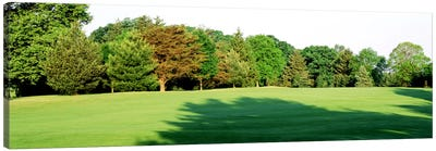 Trees on a golf courseWoodholme Country Club, Baltimore, Maryland, USA Canvas Art Print