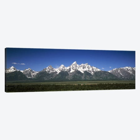Trees in a forest with mountains in the background, Teton Point Turnout, Teton Range, Grand Teton National Park, Wyoming, USA Canvas Print #PIM6953} by Panoramic Images Canvas Artwork