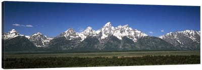 Trees in a forest with mountains in the background, Teton Point Turnout, Teton Range, Grand Teton National Park, Wyoming, USA Canvas Art Print
