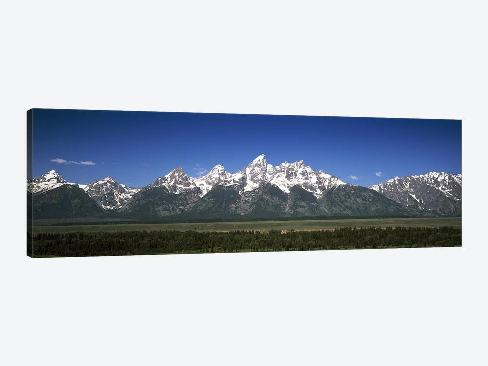 Trees in a forest with mountains in the background, Teton Point Turnout, Teton Range, Grand Teton National Park, Wyoming, USA by Panoramic Images 1-piece Canvas Wall Art