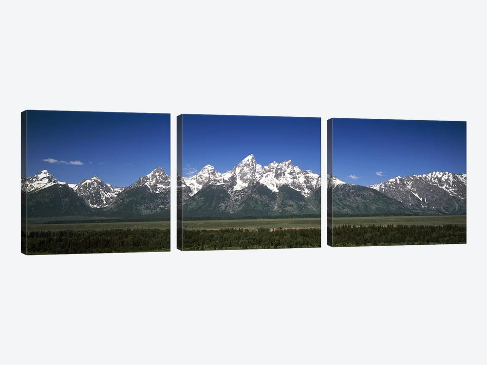 Trees in a forest with mountains in the background, Teton Point Turnout, Teton Range, Grand Teton National Park, Wyoming, USA by Panoramic Images 3-piece Canvas Art