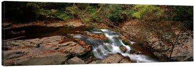 White Water The Great Smoky Mountains TN USA Canvas Print #PIM697