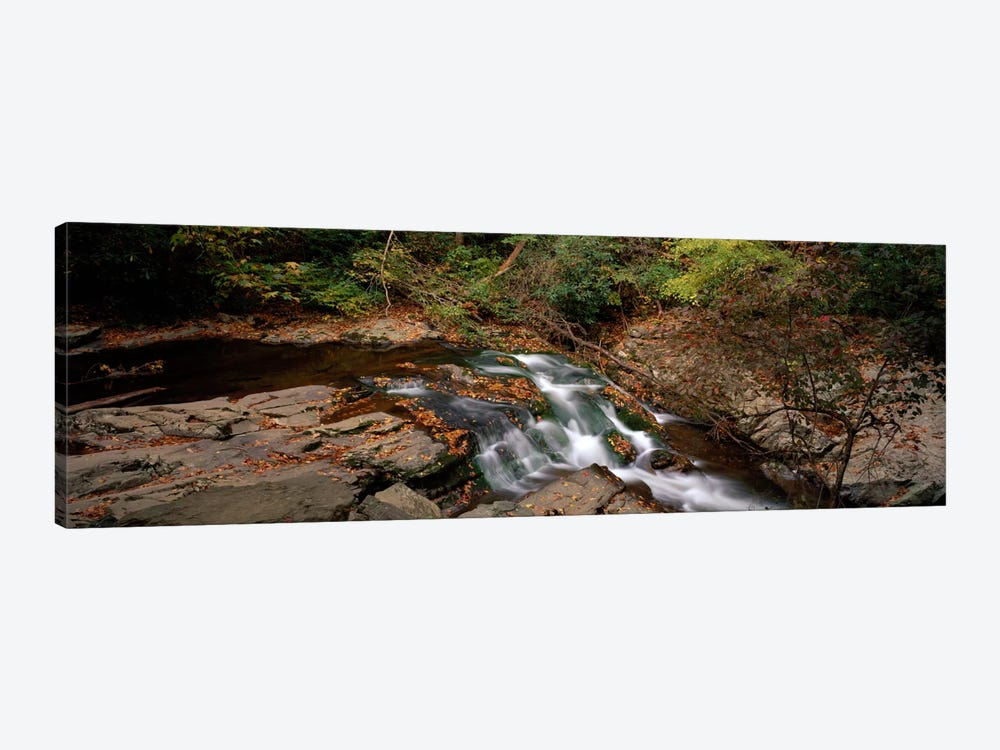 White Water The Great Smoky Mountains TN USA by Panoramic Images 1-piece Canvas Artwork
