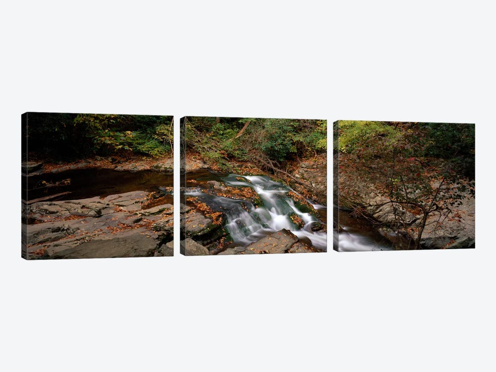 White Water The Great Smoky Mountains TN USA by Panoramic Images 3-piece Canvas Art