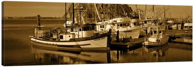 Fishing boats in the sea, Morro Bay, San Luis Obispo County, California, USA Canvas Art Print