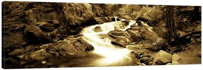 Stream flowing through rocks, Lee Vining Creek, Lee Vining, Mono County, California, USA Canvas Print #PIM7014