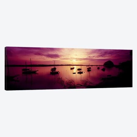 Boats in the sea, Morro Bay, San Luis Obispo County, California, USA Canvas Print #PIM7018} by Panoramic Images Canvas Artwork