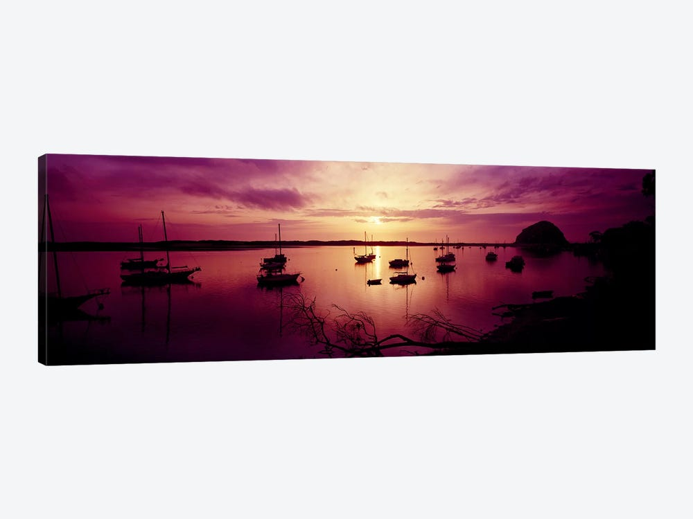 Boats in the sea, Morro Bay, San Luis Obispo County, California, USA by Panoramic Images 1-piece Art Print