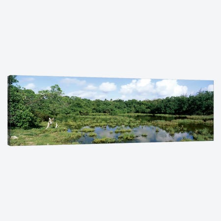 Reflection of clouds in water, Watamu Marine National Park, Watamu, Coast Province, Kenya Canvas Print #PIM7050} by Panoramic Images Canvas Artwork