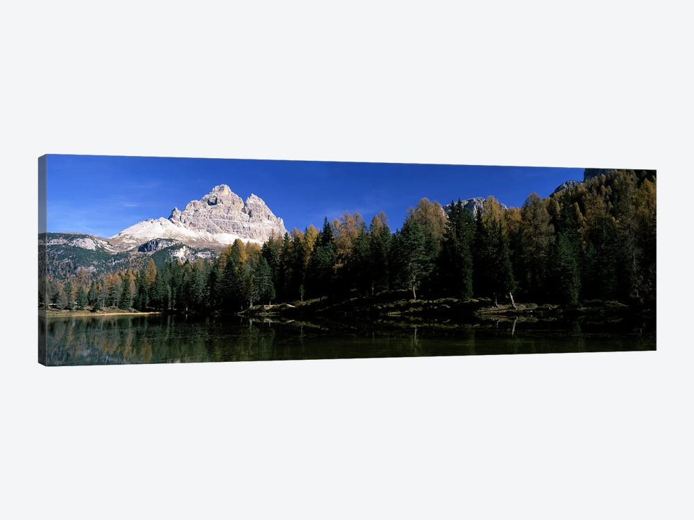 Trees at the lakeside, Lake Misurina, Tre Cime Di Lavaredo, Dolomites, Cadore, Province of Belluno, Veneto, Italy by Panoramic Images 1-piece Canvas Art