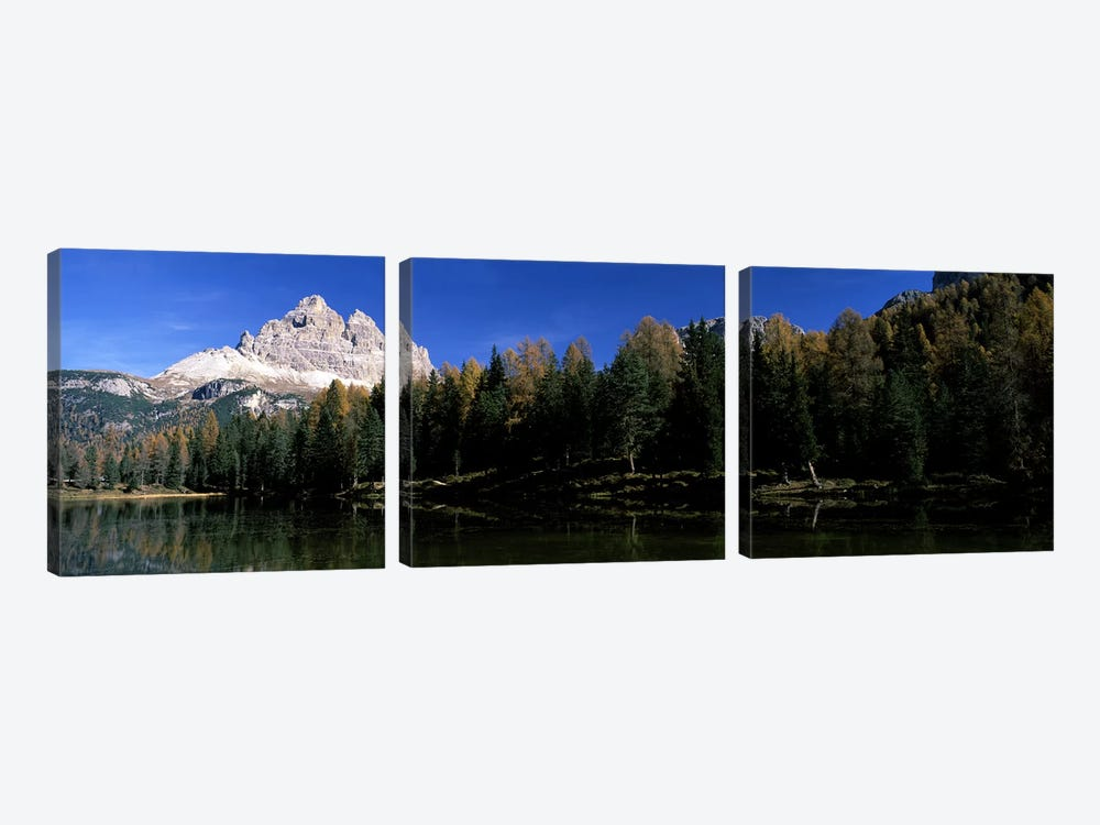 Trees at the lakeside, Lake Misurina, Tre Cime Di Lavaredo, Dolomites, Cadore, Province of Belluno, Veneto, Italy by Panoramic Images 3-piece Canvas Wall Art