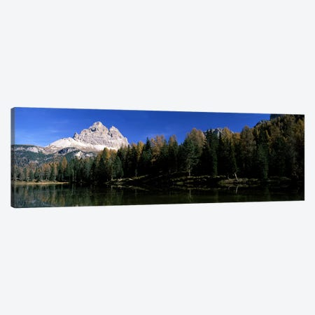 Trees at the lakeside, Lake Misurina, Tre Cime Di Lavaredo, Dolomites, Cadore, Province of Belluno, Veneto, Italy Canvas Print #PIM7084} by Panoramic Images Canvas Artwork