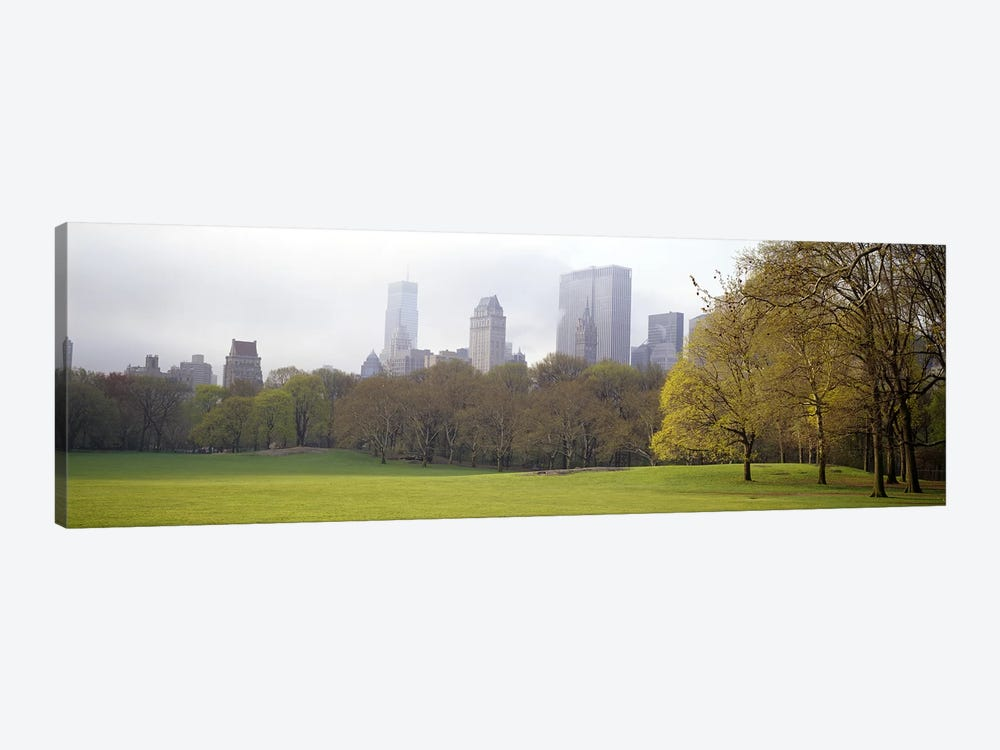Trees in a park, Central Park, Manhattan, New York City, New York State, USA #3 by Panoramic Images 1-piece Canvas Wall Art