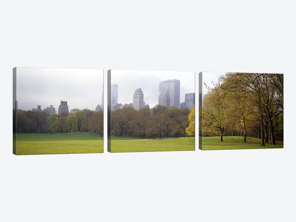 Trees in a park, Central Park, Manhattan, New York City, New York State, USA #3 by Panoramic Images 3-piece Canvas Wall Art