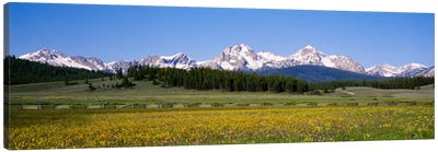 Sawtooth Range, Sawtooth Wilderness, Sawtooth National Recreation Area, Idaho, USA Canvas Art Print