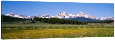 Sawtooth Range, Sawtooth Wilderness, Sawtooth National Recreation Area, Idaho, USA Canvas Art Print