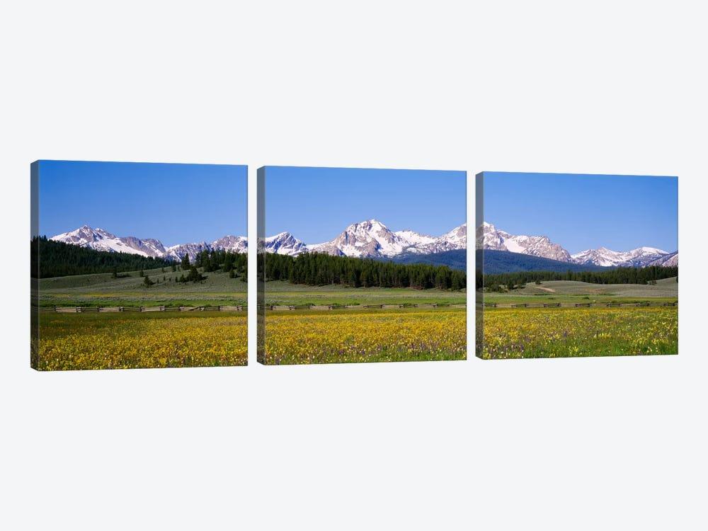 Sawtooth Range, Sawtooth Wilderness, Sawtooth National Recreation Area, Idaho, USA by Panoramic Images 3-piece Canvas Art