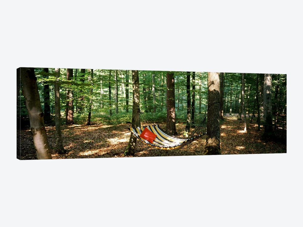 Hammock in a forest, Baden-Wurttemberg, Germany 1-piece Art Print