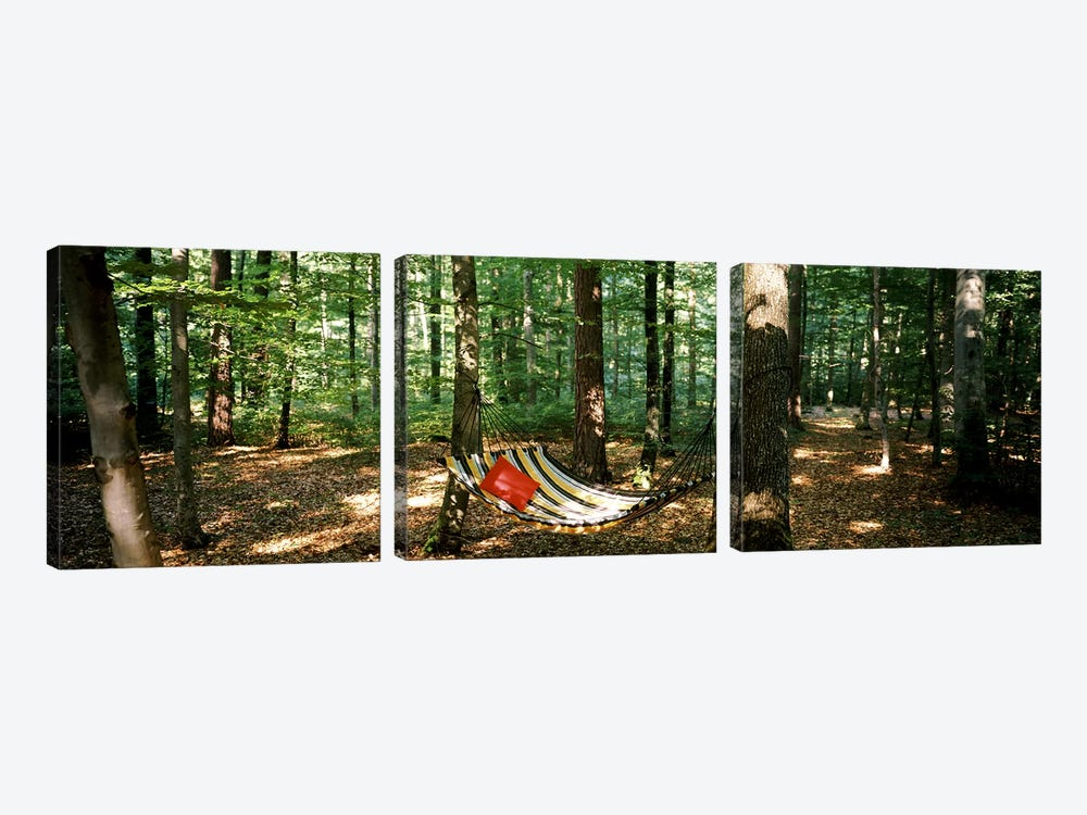 Hammock in a forest, Baden-Wurttemberg, Germany by Panoramic Images 3-piece Art Print