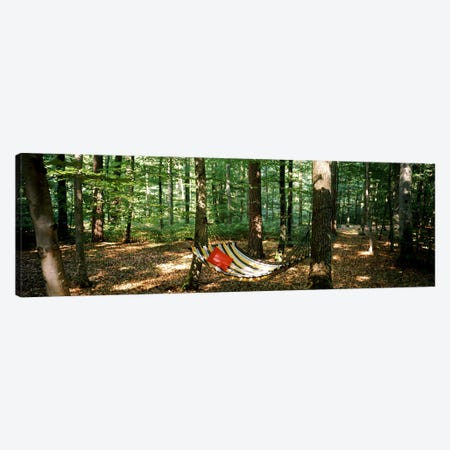 Hammock in a forest, Baden-Wurttemberg, Germany 3-Piece Canvas #PIM7166} by Panoramic Images Canvas Art Print