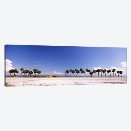 Palm trees at the roadside, Interstate 275, Tampa Bay, Gulf of Mexico, Florida, USA Canvas Print #PIM7168} by Panoramic Images Canvas Wall Art