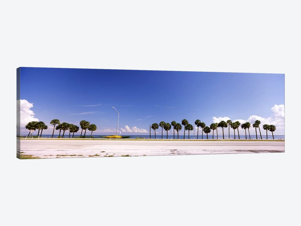 Palm trees at the roadside, Interstate 275, Tampa Bay, Gulf of Mexico, Florida, USA by Panoramic Images 1-piece Canvas Print