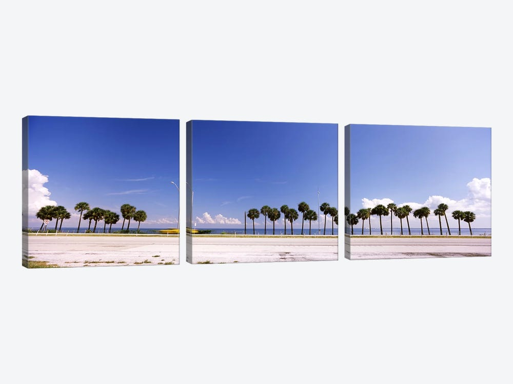 Palm trees at the roadside, Interstate 275, Tampa Bay, Gulf of Mexico, Florida, USA by Panoramic Images 3-piece Canvas Art Print
