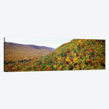 Mountain forest in autumnNova Scotia, Canada Canvas Print #PIM7215} by Panoramic Images Art Print