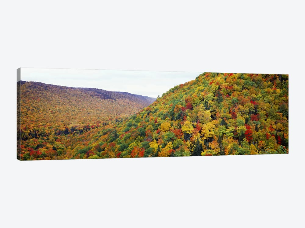 Mountain forest in autumnNova Scotia, Canada 1-piece Canvas Art Print
