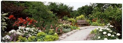 Bench in a gardenOlbrich Botanical Gardens, Madison, Wisconsin, USA Canvas Art Print
