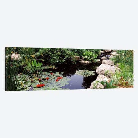 Water lilies in a pondSunken Garden, Olbrich Botanical Gardens, Madison, Wisconsin, USA Canvas Print #PIM7240} by Panoramic Images Canvas Art Print