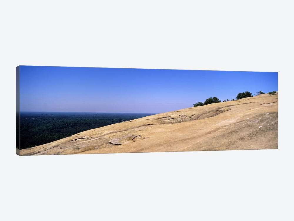 Trees on a mountain, Stone Mountain, Atlanta, Fulton County, Georgia, USA by Panoramic Images 1-piece Canvas Art Print