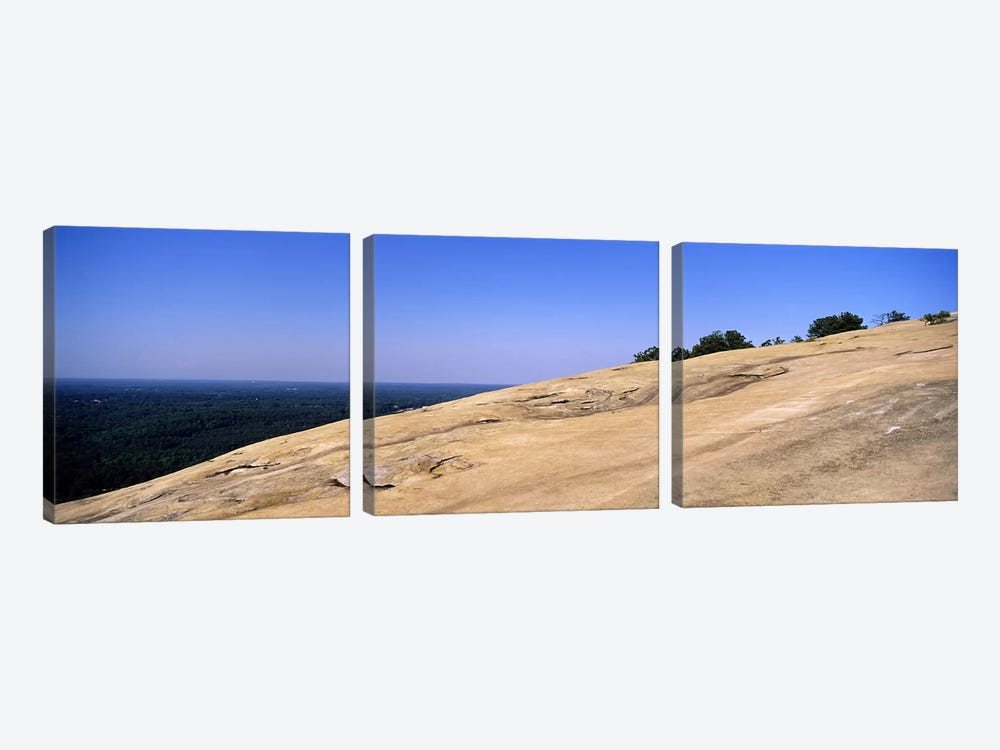 Trees on a mountain, Stone Mountain, Atlanta, Fulton County, Georgia, USA by Panoramic Images 3-piece Art Print