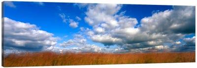 Cloudy Tallgrass-laden Landscape, Hayden Prairie State Preserve, Howard County, Iowa, USA Canvas Print #PIM731