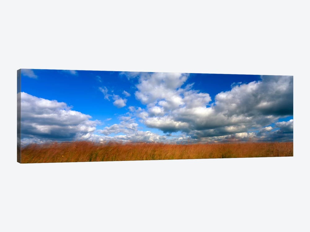 Cloudy Tallgrass-laden Landscape, Hayden Prairie State Preserve, Howard County, Iowa, USA by Panoramic Images 1-piece Canvas Art Print