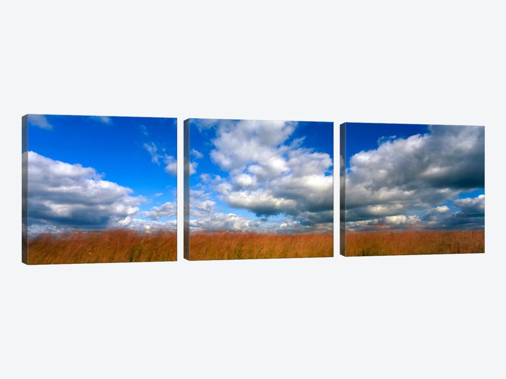 Cloudy Tallgrass-laden Landscape, Hayden Prairie State Preserve, Howard County, Iowa, USA by Panoramic Images 3-piece Canvas Art Print