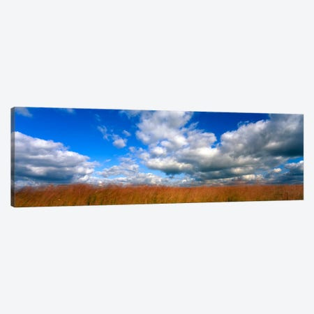 Cloudy Tallgrass-laden Landscape, Hayden Prairie State Preserve, Howard County, Iowa, USA 3-Piece Canvas #PIM731} by Panoramic Images Canvas Artwork