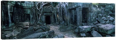 Overgrown tree roots on ruins of a temple, Ta Prohm Temple, Angkor, Cambodia Canvas Art Print