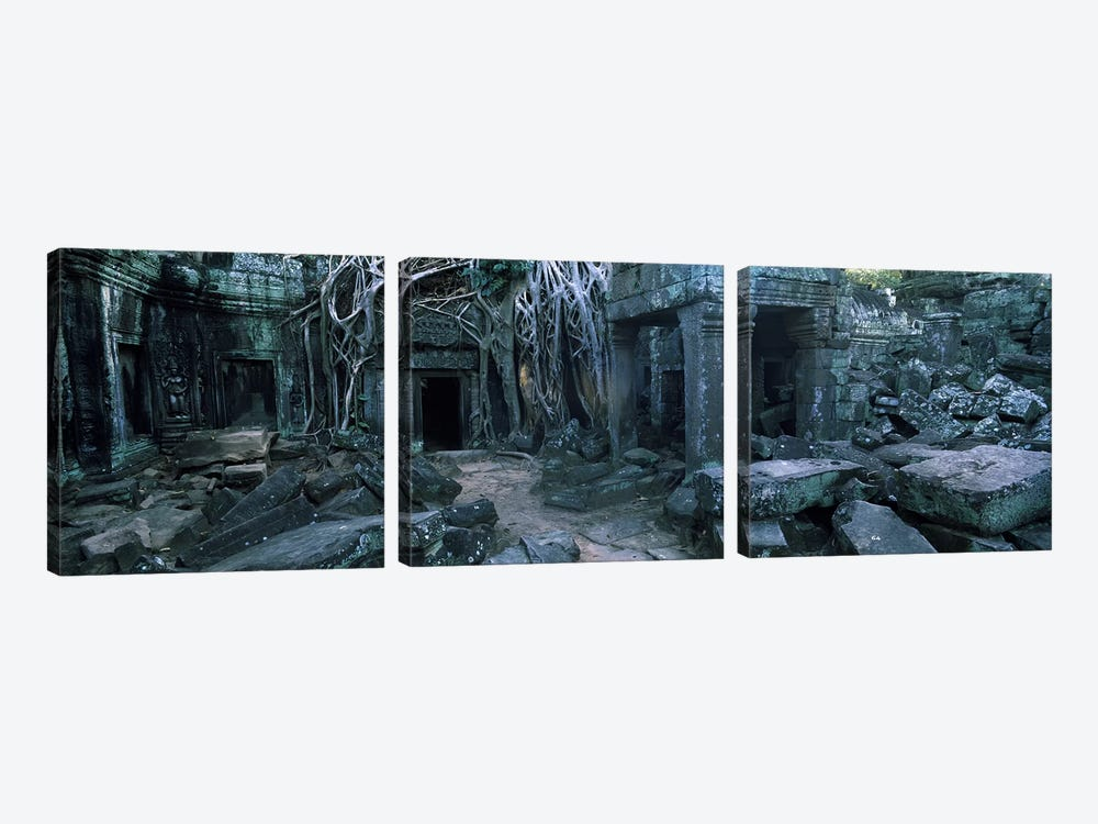 Overgrown tree roots on ruins of a temple, Ta Prohm Temple, Angkor, Cambodia by Panoramic Images 3-piece Art Print