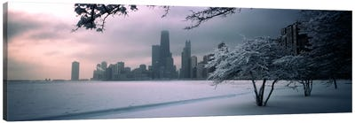 Snow covered tree on the beach with a city in the backgroundNorth Avenue Beach, Chicago, Illinois, USA Canvas Print #PIM740