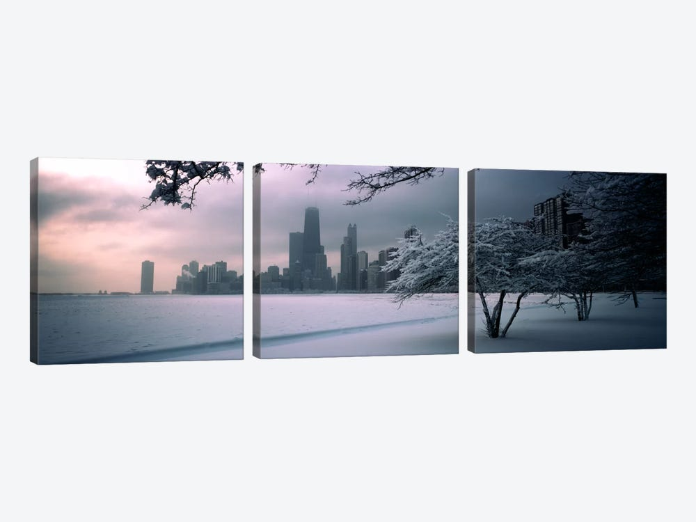 Snow covered tree on the beach with a city in the backgroundNorth Avenue Beach, Chicago, Illinois, USA by Panoramic Images 3-piece Canvas Art Print