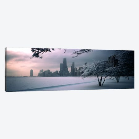 Snow covered tree on the beach with a city in the backgroundNorth Avenue Beach, Chicago, Illinois, USA Canvas Print #PIM740} by Panoramic Images Canvas Art Print