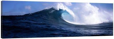 Plunging Breaker, Maui, Hawai'i, USA Canvas Print #PIM7416