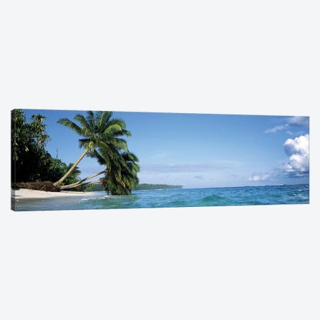 Leaning Palm Trees In A Tropical Landscape Canvas Print #PIM7431} by Panoramic Images Canvas Wall Art