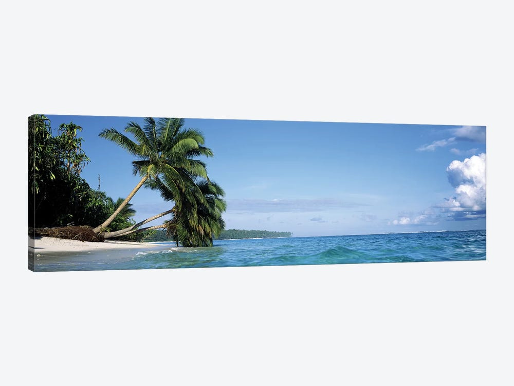 Leaning Palm Trees In A Tropical Landscape by Panoramic Images 1-piece Canvas Print
