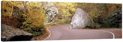 Road curving around a big boulder, Stowe, Lamoille County, Vermont, USA Canvas Art Print